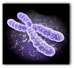 diagnostico_prenatal_de_trisomias